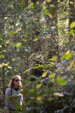 Hike in California
